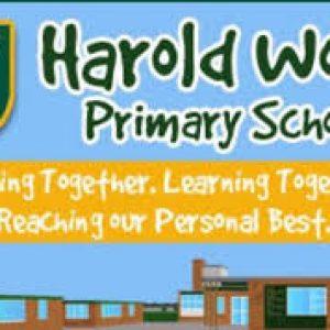 Harold Wood Primary School Summer Fayre